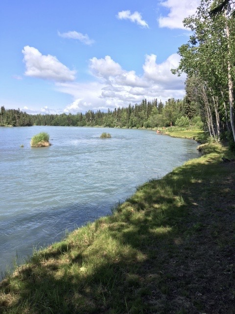 Alaska fishing on the kenai river photo gallery for Kenai river fishing lodges
